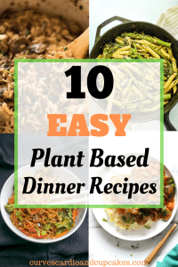 10 Delicious Plant Based Diet Dinner Recipes